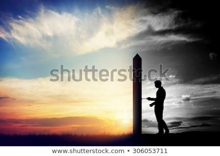 cielo · puerta · dorado · león · estatua - foto stock © stevanovicigor