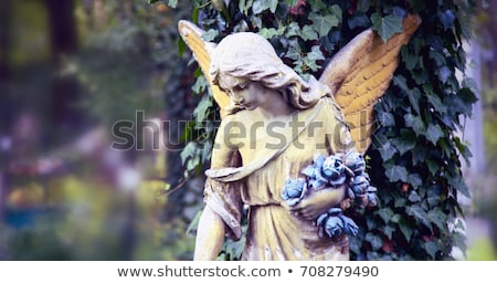 Cemetery Angel Stock photo © 13UG13th