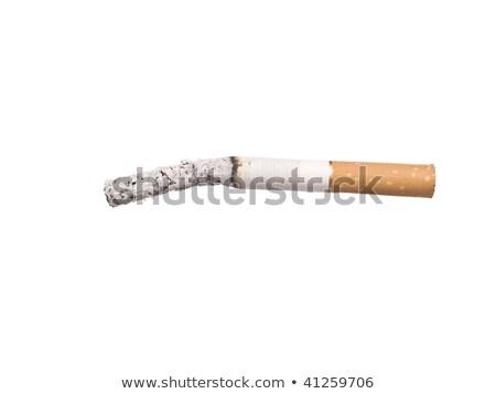 Lit cigarrette with ashes Stock photo © gemenacom