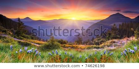 paisagem · montanha · hdr · Tailândia · natureza · verão - foto stock © hin255