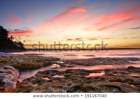 belo · oceano · longo · praia · tropical · vegetação - foto stock © lovleah