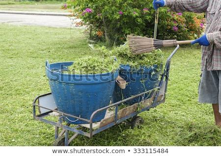 Raking lawn clippings on a suburban estate Stock photo © ozgur