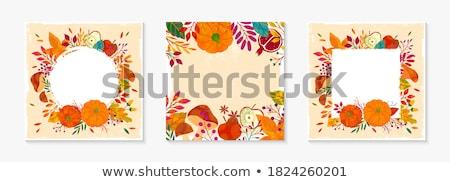 Stock fotó: Hálaadás · ősz · ősz · keret · kép · illusztráció