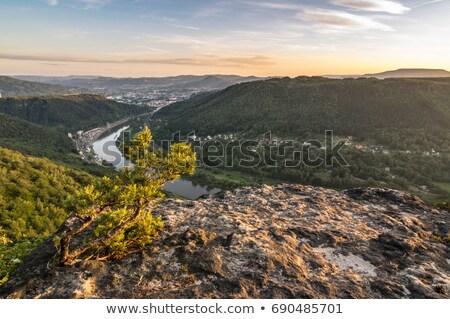 elbe canyon stock photo © ondrej83