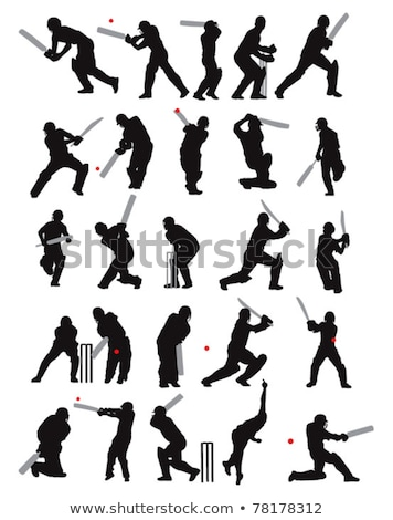 Cricket profile Stock photo © Suljo