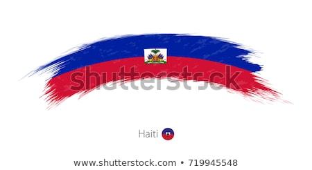 Bandiera Haiti verniciato pennello solido abstract Foto d'archivio © tang90246