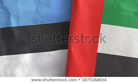 Egyesült Arab Emírségek Észtország zászlók puzzle izolált fehér Stock fotó © Istanbul2009