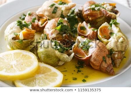 Csiga étel főtt tipikus étel Spanyolország Stock fotó © jarp17