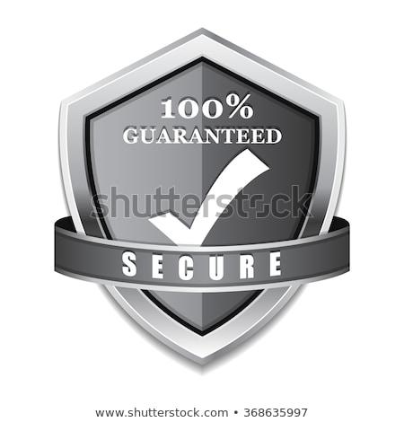 Ssl proteção proteger prata escudo vetor Foto stock © rizwanali3d