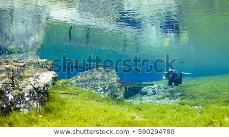 Groene meer mooie landschap bos natuur Stockfoto © Lizard