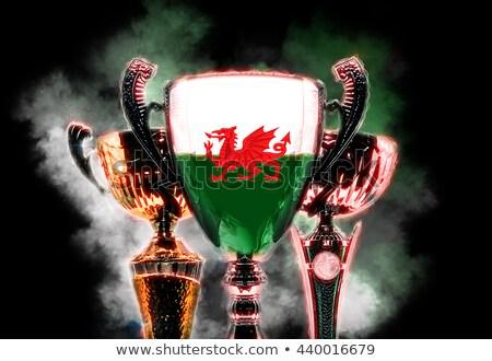 Trofee beker vlag wales digitale illustratie Stockfoto © Kirill_M