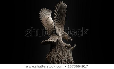 Marmer adelaar zwart wit vloer hemel wolken Stockfoto © ajlber