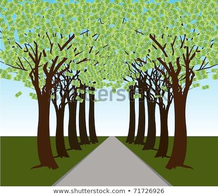 geld · groeiend · boom · groene · milieu - stockfoto © cteconsulting