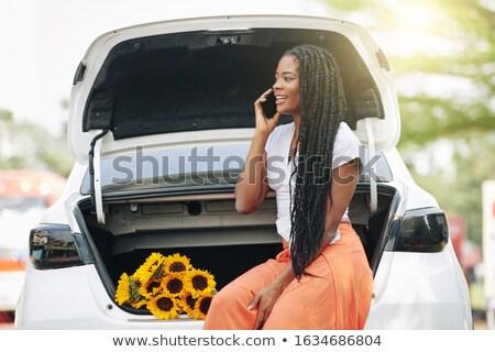 Sexy · деловой · женщины · автомобилей - Сток-фото © aikon