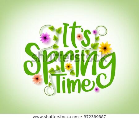 Primavera tempo cartaz turva lata usado Foto stock © pakete