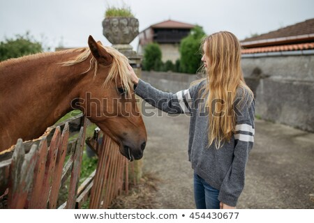 pretty blond girl stroking a horse stock photo © konradbak