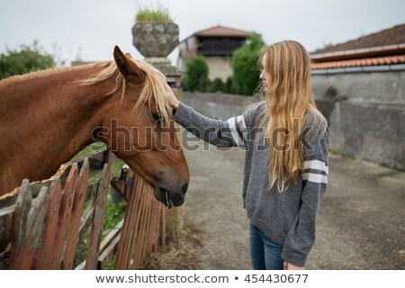 Pretty blond girl stroking a horse Stock photo © konradbak