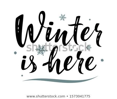зима каллиграфия текста сезонный изолированный Сток-фото © teirin_toys