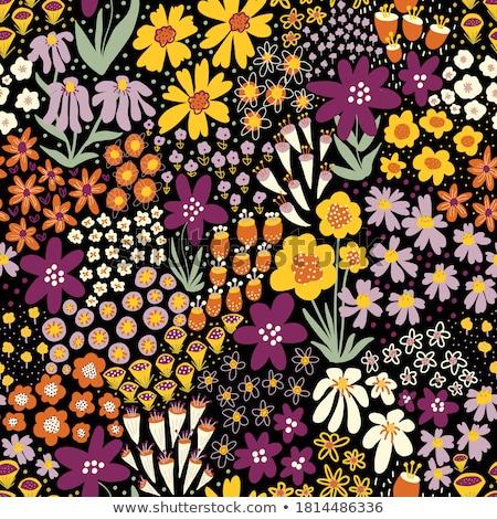 turuncu · dekoratif · çiçek · siyah · bahar · soyut - stok fotoğraf © galyna