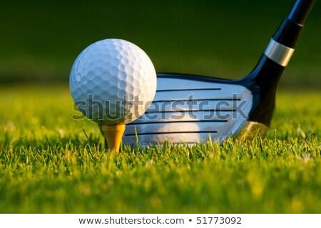 воды · мяч · для · гольфа · небе · гольф · пузырьки · чистой - Сток-фото © rufous