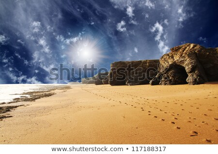 footprints on sand along sea at dawn stock photo © mikko
