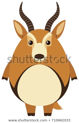 Cute gazelle with round body Stock photo © bluering