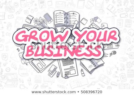 Bem sucedido planejamento rabisco magenta palavra negócio Foto stock © tashatuvango