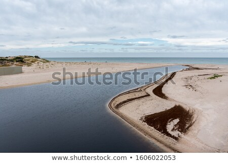 coastal landscape at gulf st vincent stock photo © dirkr