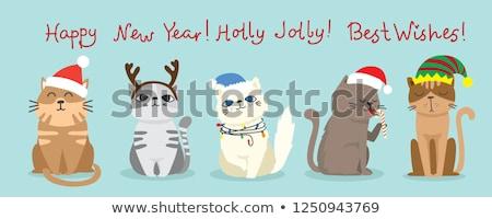 ストックフォト: クリスマス · サンタクロース · 帽子 · 猫 · ペット