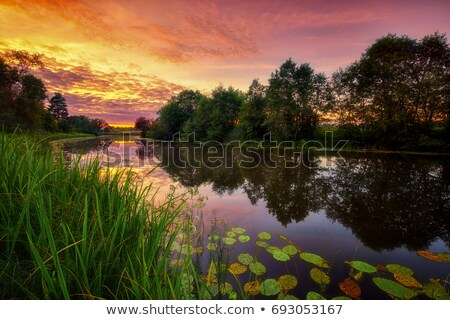 Stock photo: Amazing sunset on the river in the summertime