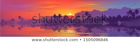 forest and ocean landscape on sri lanka Stock photo © dolgachov