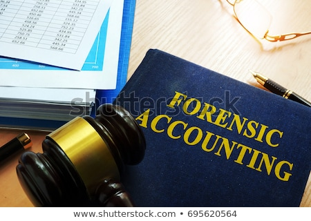Accounting Concept on Book Title. Stock photo © tashatuvango