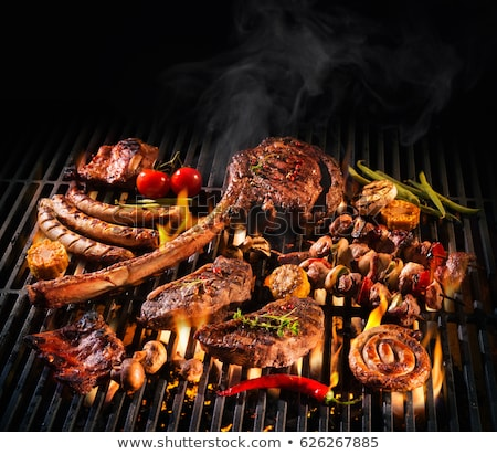 Grilled meat in barbecue with flames and coals. Stock photo © Valeriy