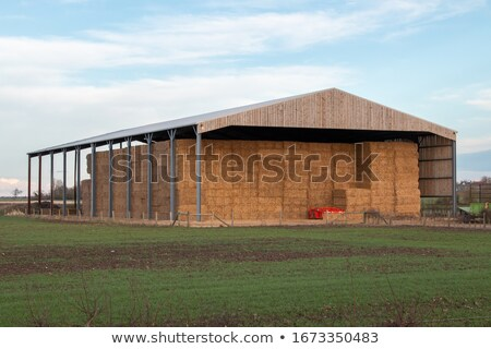 farmyard and sheds Stock photo © morrbyte
