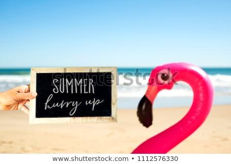 розовый · фламинго · пляж · надувной · песок · лет - Сток-фото © nito
