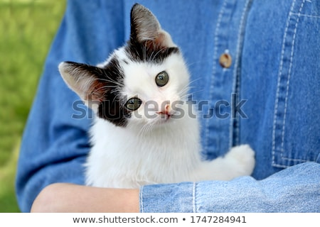 woman holding her lovely black and white cat stock photo © hsfelix