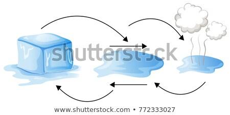 Diagrama diferente estado agua ilustración Foto stock © colematt
