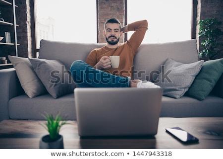 Portret tevreden jonge man trui geïsoleerd beige Stockfoto © deandrobot