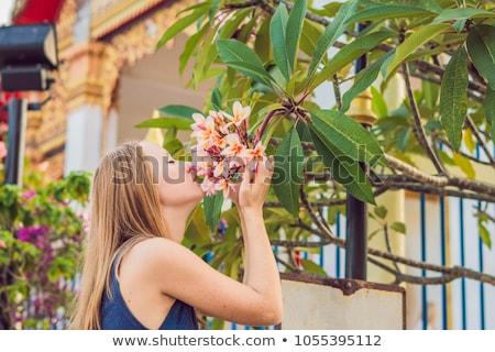 Jonge vrouw toeristische thai tempel phuket stad Stockfoto © galitskaya