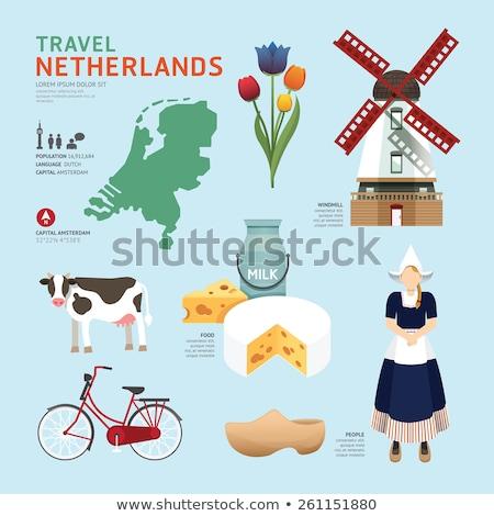 Holland flat concept icons Stock photo © netkov1