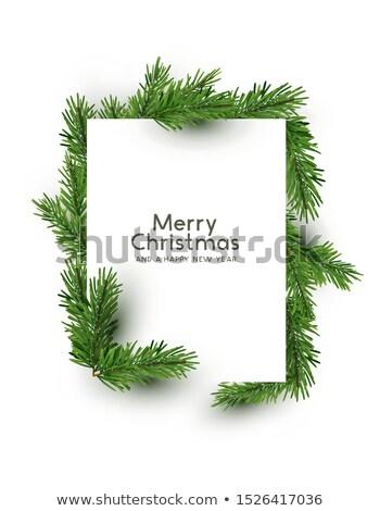 vrolijk · christmas · vierkante · vector · wenskaart · kerstman - stockfoto © solarseven