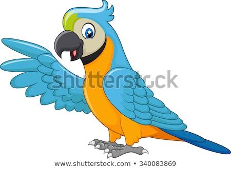 Papagaio desenho animado asa arte laranja Foto stock © yayayoyo