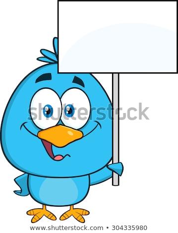 Aranyos kék madár rajzfilmfigura magasra tart üres tábla Stock fotó © hittoon