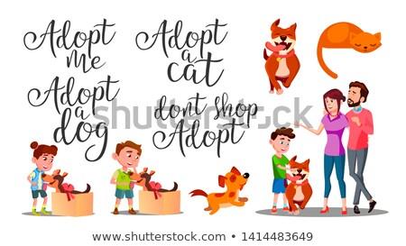 кошки · семьи · силуэта · дизайна · один - Сток-фото © pikepicture