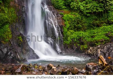 водопада Бали Индонезия подробность дерево лес Сток-фото © boggy