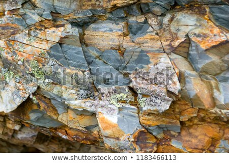 Colored archeology pattern Stock photo © netkov1