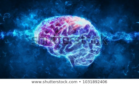 Neurology Anatomy Stock photo © Lightsource