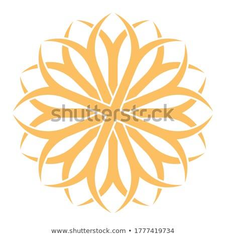 Wektora twórczej ikona kwiatowy dekoracyjny Zdjęcia stock © ExpressVectors