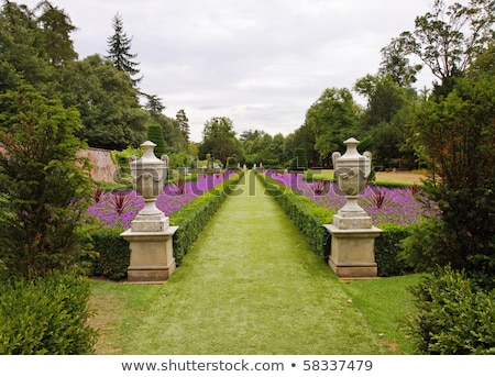 Gardeners Sculpturing Shrubs with Flowers in Lawn Stock photo © robuart