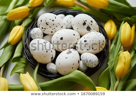 Beautiful yellow tulips with dotted quail and chicken eggs in nest on white Stock photo © dash